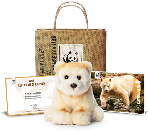 Wwf Wildlife Adoption Kit Giveaway Vancouver Blog Miss604 By