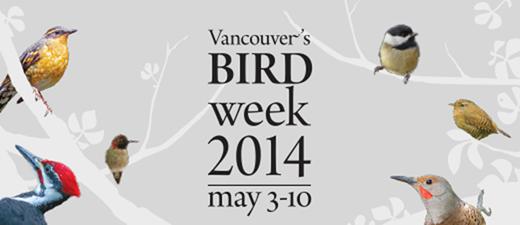 birdweek