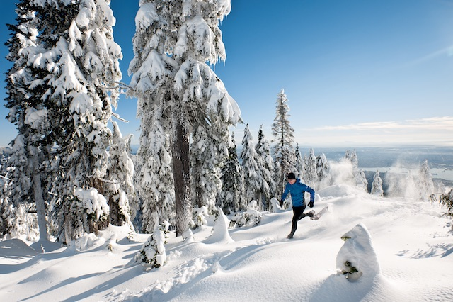 grousewinter-snowshoe