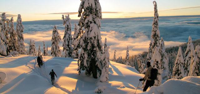 Snowshoe Tours