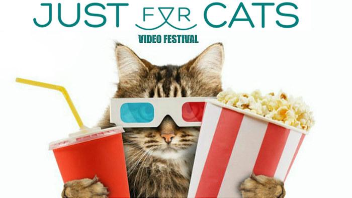 JustForCatsFestival_2016
