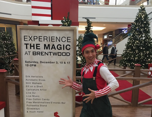 brentwoodholiday