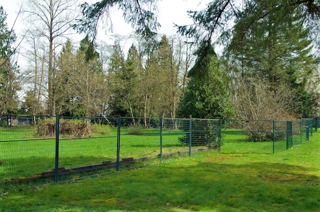 TD Common Ground Forsyth Park