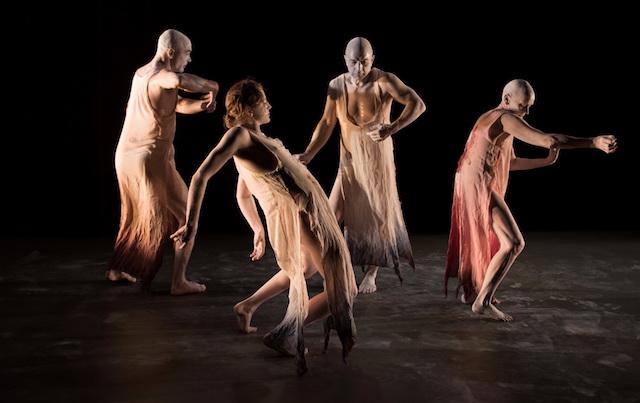 Kokoro Dance's Embryotrophic Cavatina