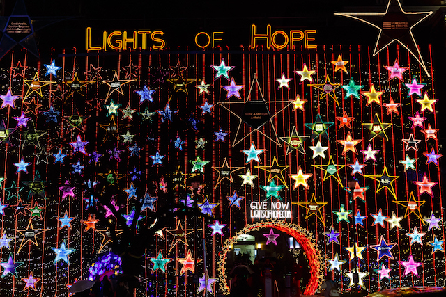 Lights of Hope at St. Paul's